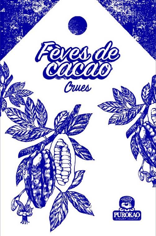fèves de cacao crues 1